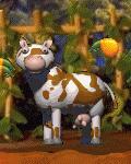 The Cow (C1 Living COB)