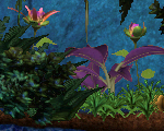 Garden Box Deco Plant Pack (C3DS Misc COB)