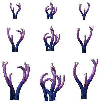 Coral Set 1 (Click to enlarge)