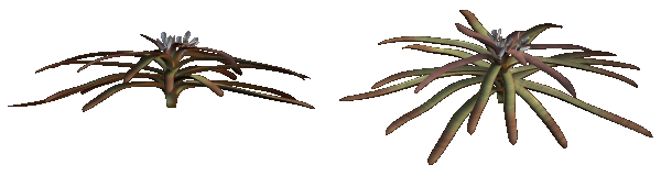 Weird Plant Sprites (Click to enlarge)