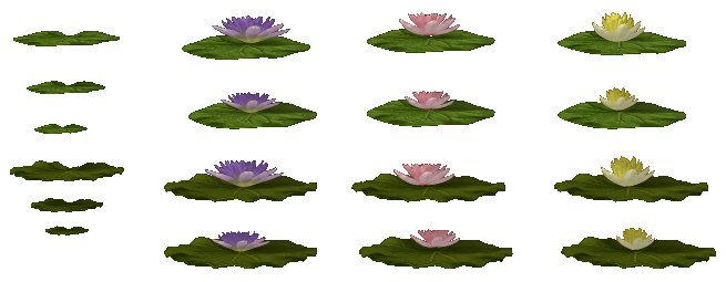 Water Lillies: Part 1 (Click to enlarge)
