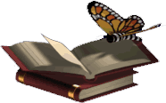 Butterfly on Book (Click to enlarge)