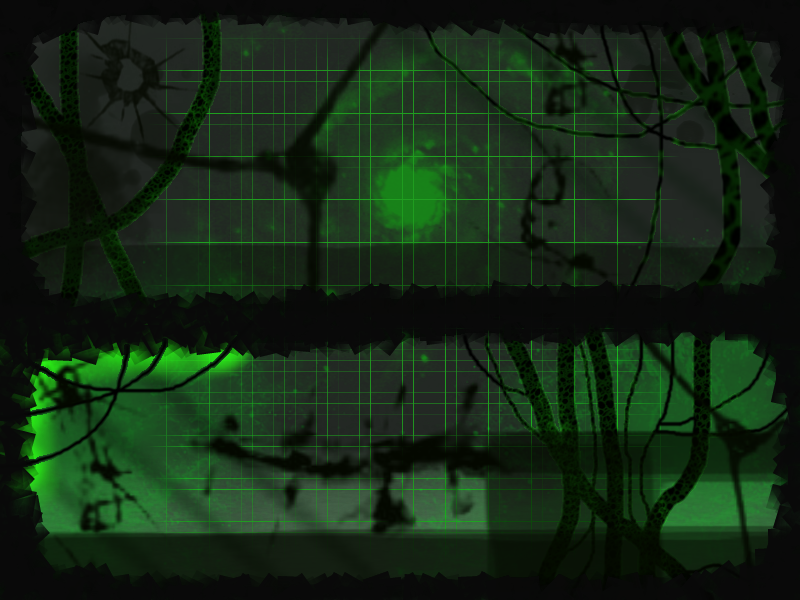 Borg Norn Metaroom V2 (Click to enlarge)